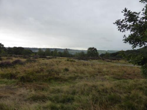 Bradford Millennium Way: Shipley Glen