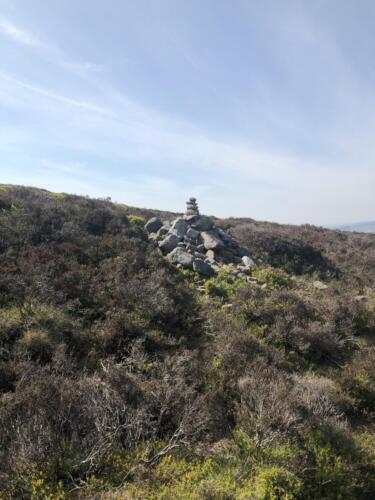 Dalesway Link Hike: Burley Moor