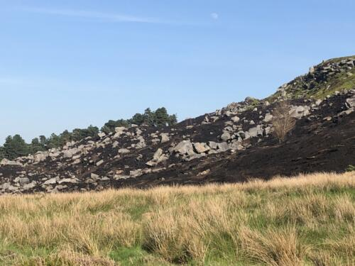 Dalesway Link Hike: Rocky Vally