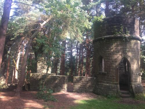 Goit Stock Falls Hike: Folly in the woods