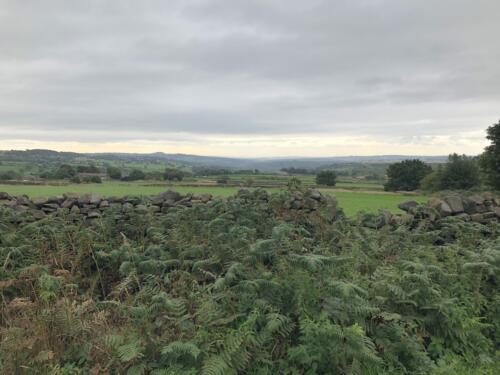 Bradford Millennium Way: View towards Leeds from Birch Close Lane