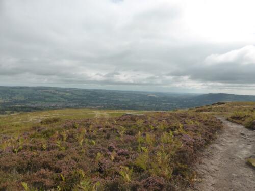 Bradford Millennium Way: Burley Moor